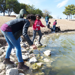Students collect water samples from the city park for their research.